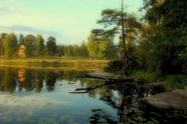 Dammsjön-13