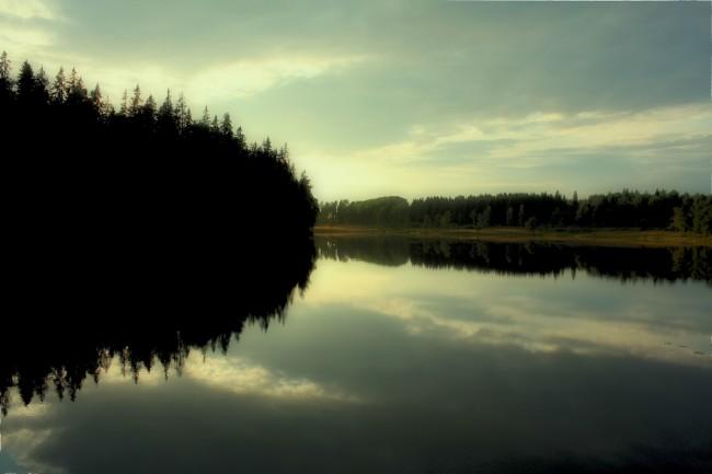 Dammsjön-17