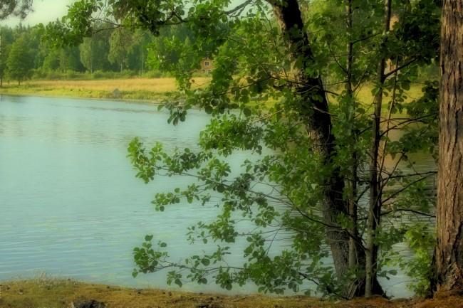 Dammsjön-2