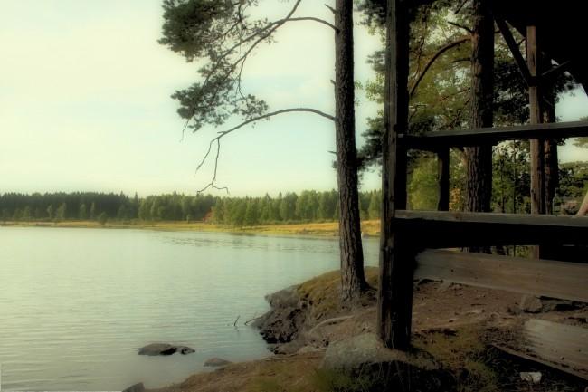 Dammsjön-4